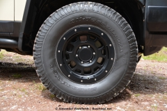 2016-05-01 fj cruiser trail teams nestle 15